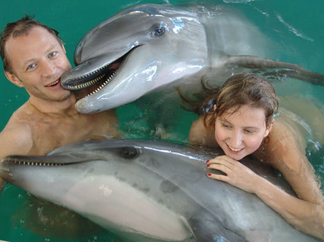 Плавание с дельфина в Москве в бассейнах с морской водой для мам с детьми