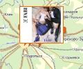 Обувные салоны Fabi в Москве и Московской области