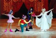 Санкт-Петербургский государственный детский ледовый театр