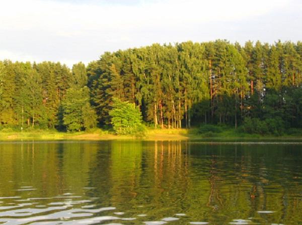 Чем интересны водохранилища Москвы и Московской области