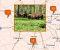 Куда поехать на выходные из Москвы?
