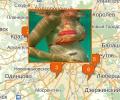 Где найти бассейн для беременных в Москве?