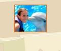 Где в Москве можно поплавать с дельфинами?