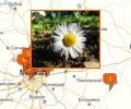 Где лучше всего купить грунт для цветов в Москве и области?