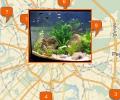 Где заказать чистку аквариумов в Москве?