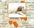 Где расположены приюты для животных в Москве?